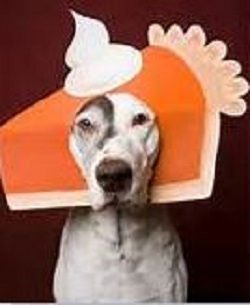 Dog-Turkey